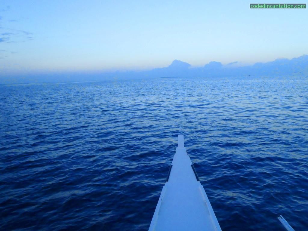 Morning Dolphin Watch Charter Big Island Charters