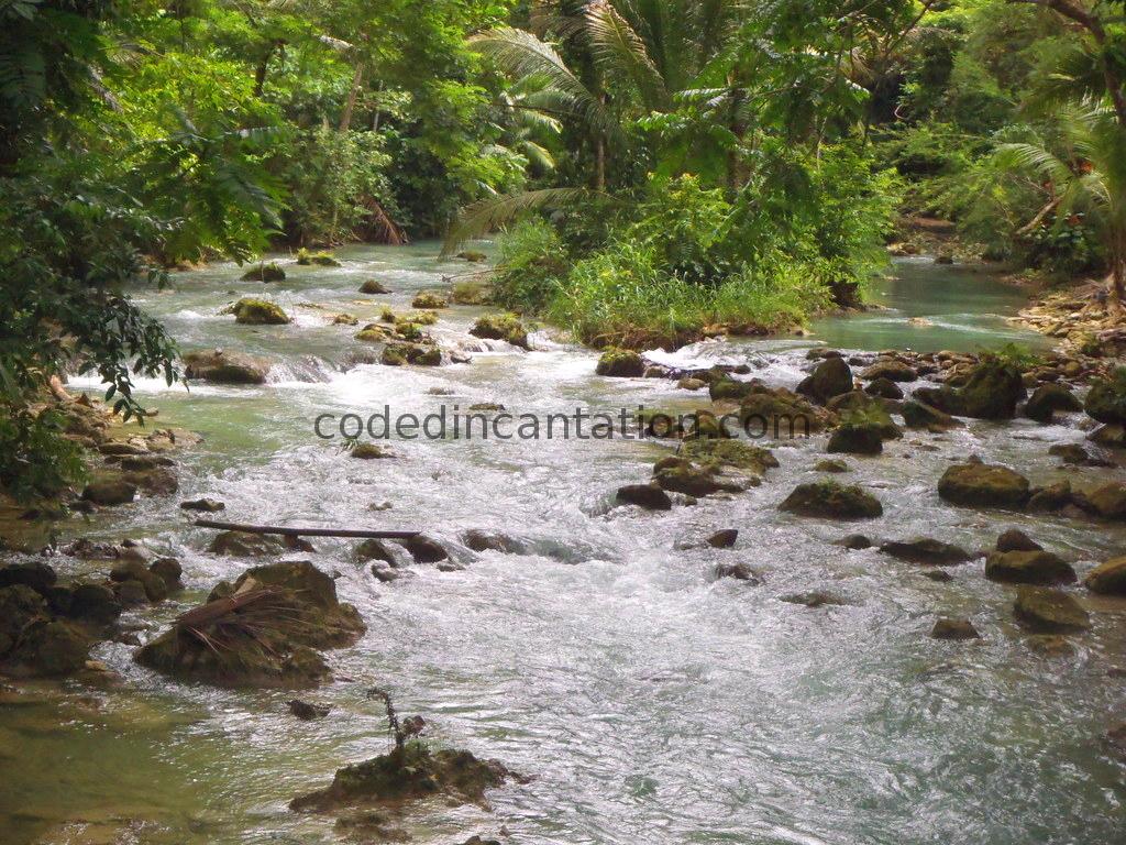 Trip to Badian: Kawasan Falls